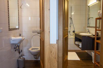 Toilette und Badezimmer mit Dusche, Waschtisch, Spiegel und Toilette Apartment Schwalbennest